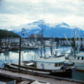 New Valdez harbor.