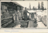 Moose Johnson next to cabin with beaver pelts on boards.