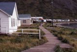 King Cove. Houses and Boardwalk along Sea Side.