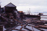 Logging, Wrangell Lumber Co.