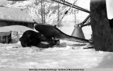 Bob thawing ice off plane skis, 1938-1939.
