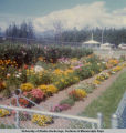 Flower garden at State Fair.