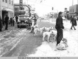 Fur Rendezvous, ca. 1940's. Road closed for the dog teams.
