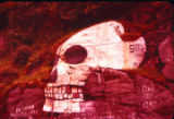 Soapy Smith's Skull Skagway 1957.