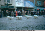 Fur Rendezvous dog race. Feb. 1953, Anchorage, Alaska.