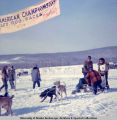 Preparing for start of North American Championship Sled Dog Races, Fairbanks, 1966.