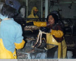 Processing Alaskan crabs.