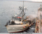 13th Region boat in Cold Bay, Alaska supp[l]ying crab to the mother ship.