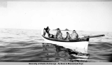 Hunting Walrus at Poongook [Punuk Islands, 1938-1941].