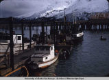 Docks in Valdez.