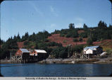 Fishermen's houses along Halibut Cove.