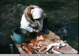 Woman cutting fish.