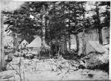 Portage Bay camp, May 1898.