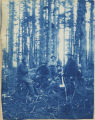 Members of Expedition No. 3 clearing a forest, 1898.