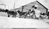Arrival north bound mail stage, Gulkana, Alaska [ca. 1910-1920].