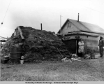 Sod home Mekoryuk, Nunivak Island...June 28, 1948.