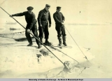 "Hauling a walrus onto the ice during production of the film ""Eskimo"", 1932-1933."