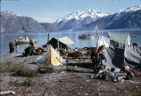 Tent camp in Glacier Bay, Alaska, 1963.