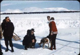 People with sled dogs at Iliamna, Alaska.