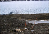 Site markers on Baffin Island, 1958.