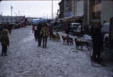 Dog team during Fur Rendezvous in Anchorage.