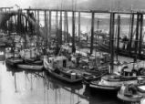 Part of the fishing fleet at Juneau.