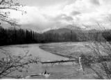 Alaska Highway, Tok-Slana Section. Tok River—upstream above road crossing.