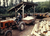 Harold Pomeroy hauling sawdust at his sawmill at Bear Cove.