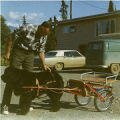Harold Pomeroy and a dog pulling a cart in Anchorage.