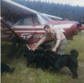 Harold Pomeroy with dogs and a Homer Air Service plane.