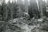 Tent at Bear Cove homestead.