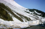Avalanche caused by 1964 earthquake.