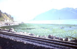 Turnagain Arm after the 1964 earthquake.