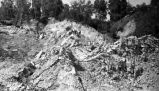 Landslide in Anchorage after the 1964 earthquake.