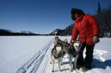 Mushing dogs on Long Lake.