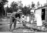 Man and woman sawing a log, Palmer, 1936.