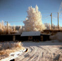Knik Bar in winter.