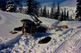 Dog sled with camp gear spread out in snow, along the Iditarod Trail.