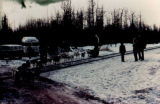 Dog team crossing the railroad tracks near Eklutna.