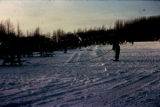 Preparing for dog sled race start on Knik Lake.