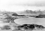 Scene of Unalaska from surrounding hills, 1931.