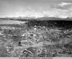 Aerial view of Turnagain houses and landslide after the 1964 earthquake.