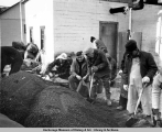 Men filling sandbags in Seldovia to protect against flooding from 1964 earthquake.
