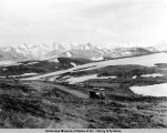 Sable Pass, Mt. McKinley Park bus tour service, 1925.