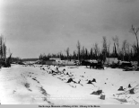 The new town of Wassilla [sic] at the crossing of Knik wagon road and A.E.C. R[ailwa]y, Mar. 26,...