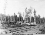 Chicaloon [sic] Lumber Co.'s sawmill on Eklutna siding, capacity 10,000 ft.