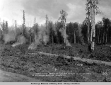 Clearing new ground on Gov[ernment] Exp[eriment] Station, 1 1/2 miles north of Matanuska Junction,...