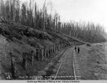 Mile 131, Gov[ernmen]t R[ail]road, piles holding back glacial silt, Oct. 12, 1918.
