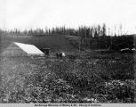 The Harmon place, Matanuska Valley, Oct. 12, 1918.