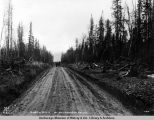 Wagon road in Matanuska Valley.